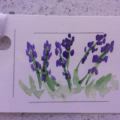 Irish Wildflower Gift Tag Collection - Lavender