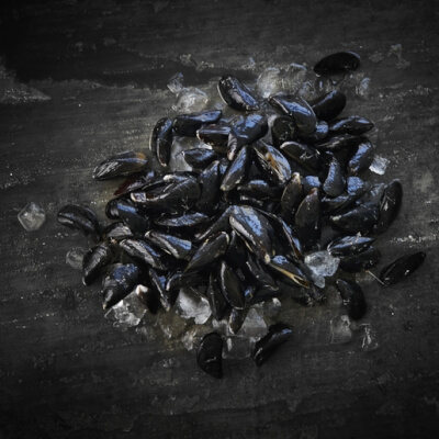 Live Mussels 1Kg