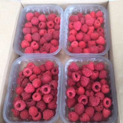Raspberries  Frozen In Punnets