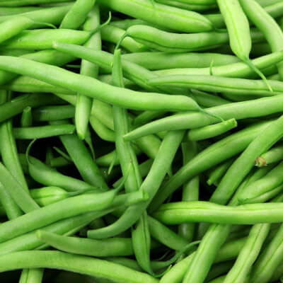 Organic French Beans Grown In Somerset