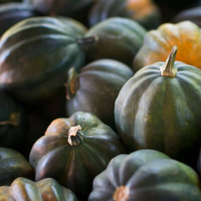 Organic Acorn Squash Grown In Somerset