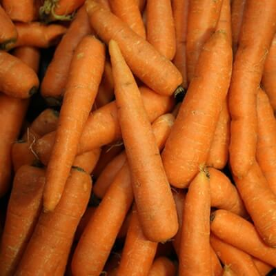 Organic Washed Carrots Grown In Scotland