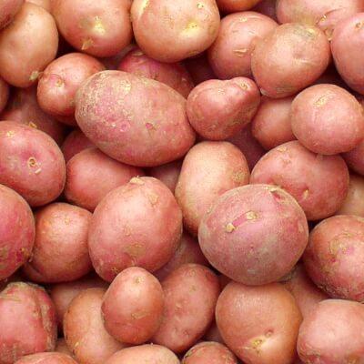 Organic Desiree Red Potatoes