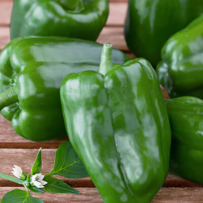 Organic Green Bell Peppers Grown In Lancashire