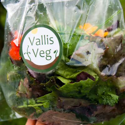 Salad Leaves Grown At Vallis Veg