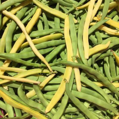 French Beans Grown At Vallis Veg