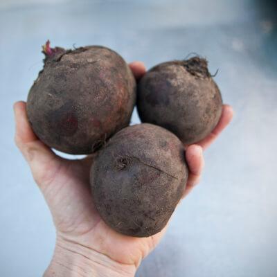 Organic Beetroot Grown In The U.K.