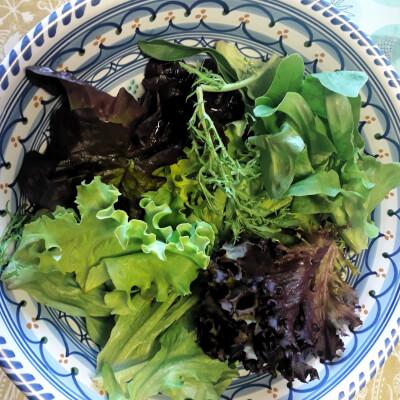 Mixed Salad Leaves - Comeragh Mt Farm
