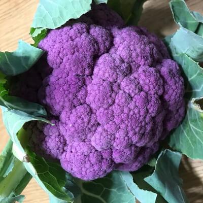 Cauliflower Purple.     Scottish