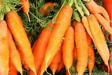 Dirty Carrots - Scottish Produce