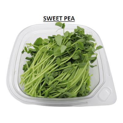 Microgreens - Peashoots