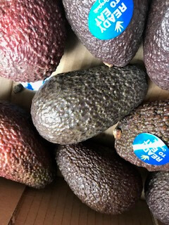 Organic Avocados