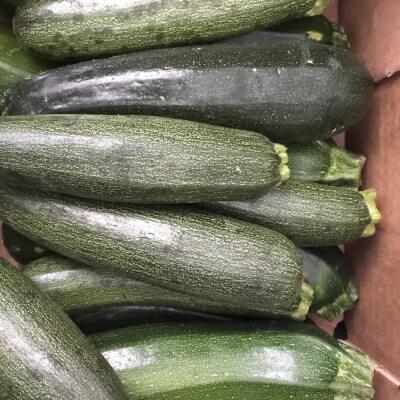 Organic Courgette