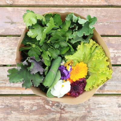 Seasonal Salad Bag