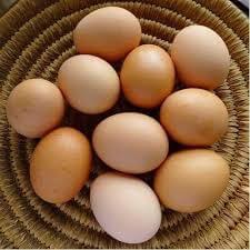 Organic Eggs - 1/2 Dozen