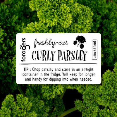 Curly Parsley (Freshly Cut)