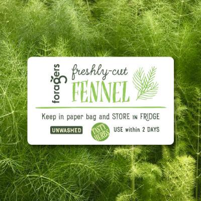 Fennel (Bunch Of Fronds, Freshly Cut)