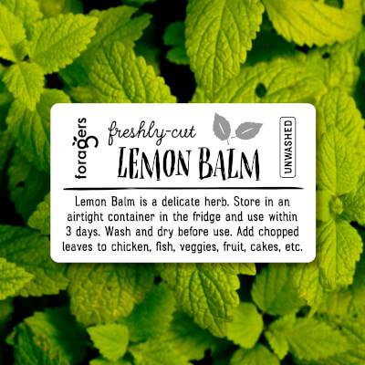Lemon Balm (Freshly Cut)