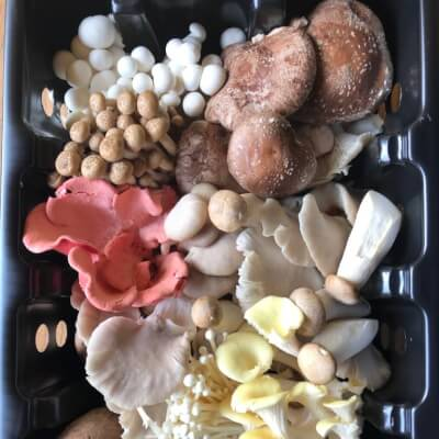 1Kg Forest Mix Mushrooms