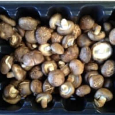 1Kg  Shiitake Mushrooms
