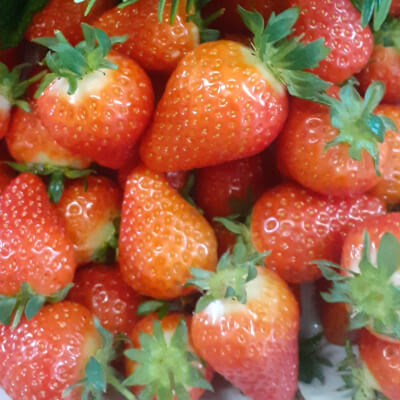Fresh Irish Wexford Strawberries