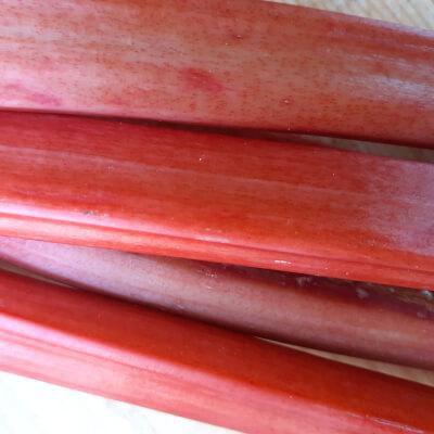 Champagne Seasonal Rhubarb