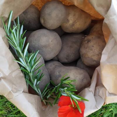 Potatoes - Records