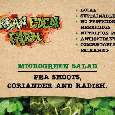 Pea Shoots, Coriander And Radish Microgreen Salad Mix.