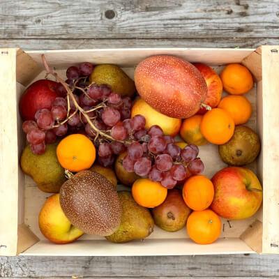 Fruit Bag Extra Large