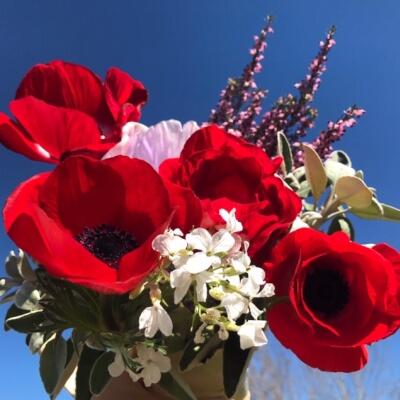 Irish Grown Spring Flower Bunches