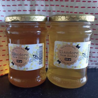 Glandore Raw Honey