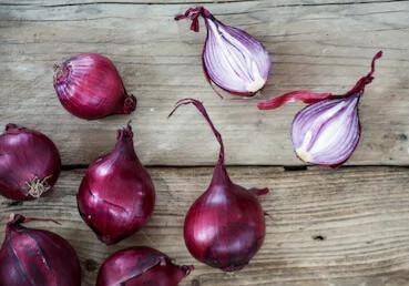Organic Red Onion Seeds