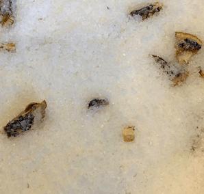Lemon & Lime Bath Salts