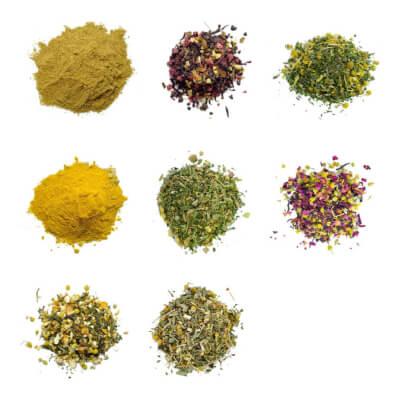 Loose Leaf Herbal Teas & Vegan Spiced Lattes Collection