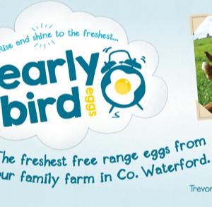 Early Bird Free Range Eggs