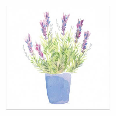 Greeting Card  Suitable For All Occasions (Lavender Pot)