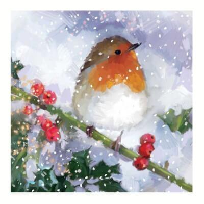 Festive Robin Christmas Card Pack Of 10 1 Design
