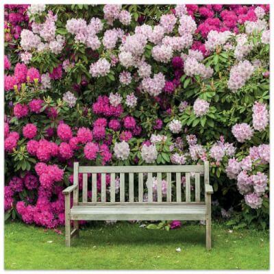 Greetings Card, Floral Garden - Garden Seat