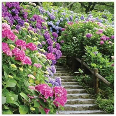 Greeting Card, Floral Garden  - Steps