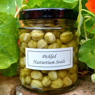 Pickled Nasties