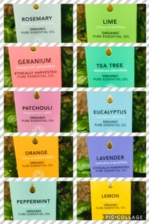 Organic Tisserand Orange Essential Oil