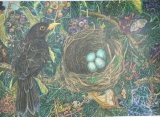 Blackbird & Nest Large Blank Card