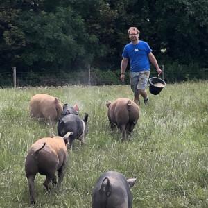 Ballymaloe farm