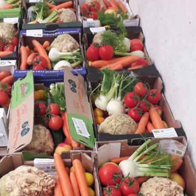 Mixed Organic Veg Fruit Box