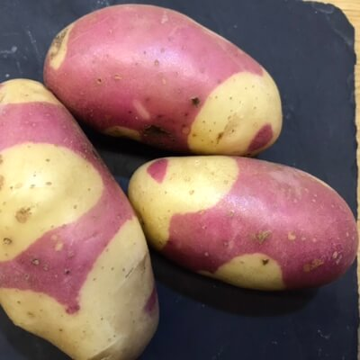 Potatoes - Pink Gypsy