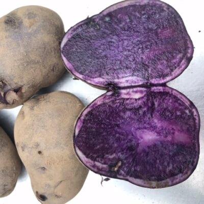 Potatoes Salad Blue