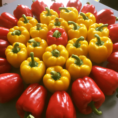 Stuffed Peppers - Shimla Mirch