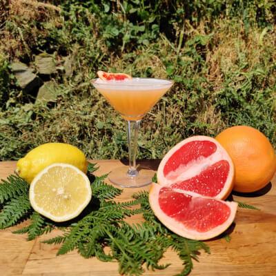 Grapefruit + Rosemary Sour
