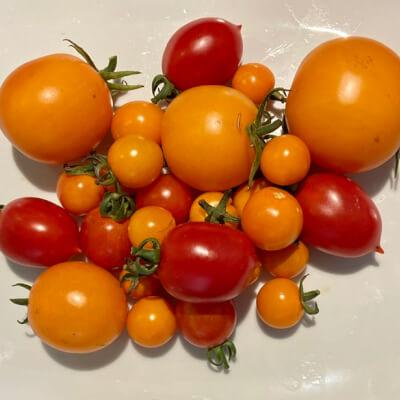 Tomatoes - Cherry Heritage Mix