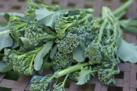 Sprouting Broccoli- Tender Leaf